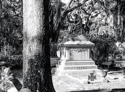 Savannah Fine Art . Savannah Old Trees Photograph - Devoted Wife by John Rizzuto