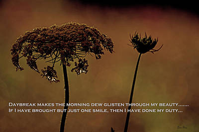 Photograph - Dew At Daybreak Poem Greeting Card by Lesa Fine