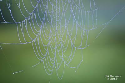 Photograph - Dew Catcher by Peg Runyan