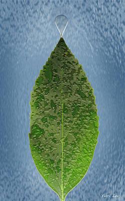 Photograph - Dew On A Leaf by Yuri Lev