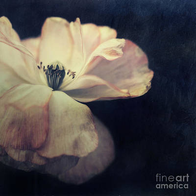 Light In The Dark Art Print by Priska Wettstein