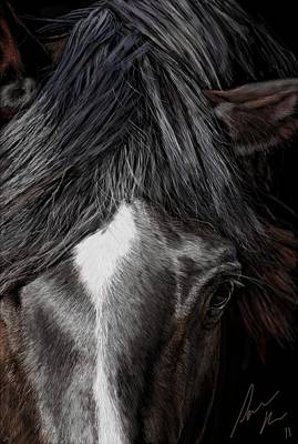 Domestic Animals Digital Art - Diablo by Laura Klassen