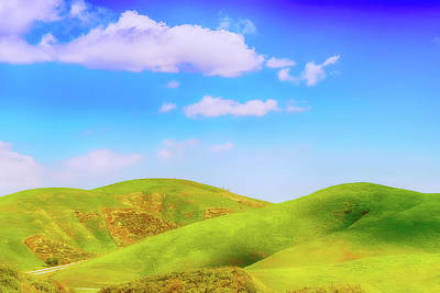 Photograph - Diamond Bar Hills by Joseph Hollingsworth