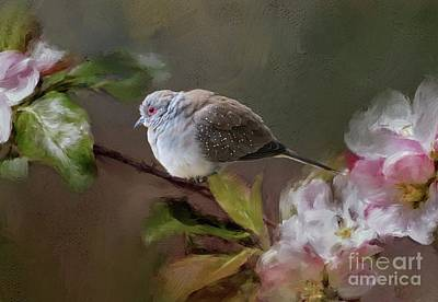 Photograph - Diamond Dove On A Blooming Tree by Eva Lechner