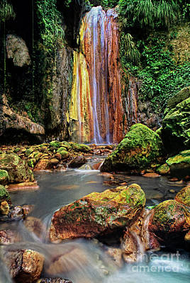 Photograph - Diamond Falls In A Peaceful Grotto On Saint Lucia Caribbean by Dave Welling