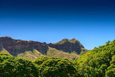 Photograph - Diamond Head Summit by Michael Scott