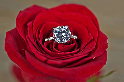 Floral Engagement Ring Photograph - Diamond Ring In Red Rose by Maria Dryfhout
