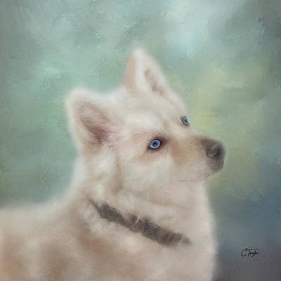 Mixed Media - Diamond, The White Shepherd by Colleen Taylor