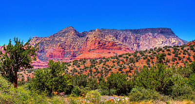 Photograph - Diamondback Gulch Near Sedona Arizona Ix by David Patterson