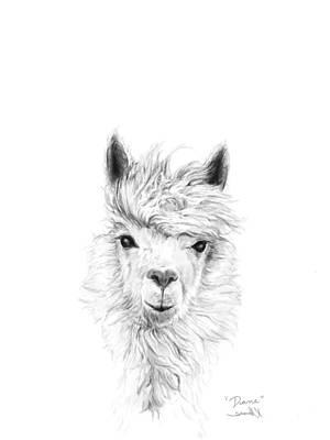 Animals Drawings - Diane by K Llamas