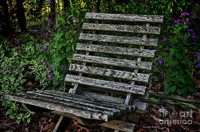 Photograph - Dianne's Chair by Randy Rogers