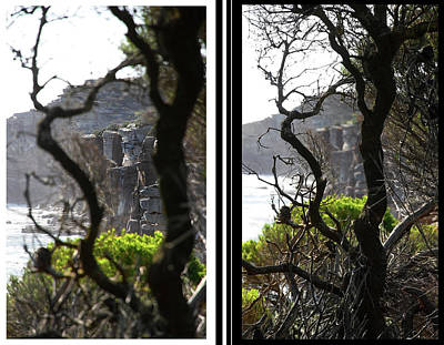 Photograph - Did The Little Tree Survived The Cliff Face Collapse by Miroslava Jurcik