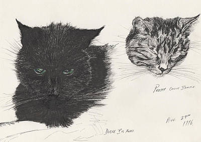 Kitty Drawing - Diddybigface And Colliebeastie by Vincent Alexander Booth