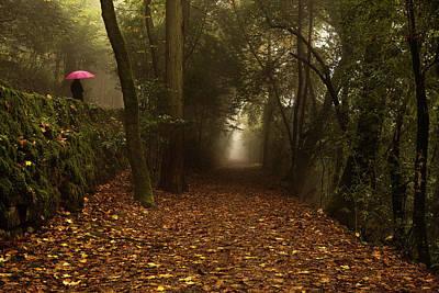 Photograph - Diferent Paths by Jorge Maia