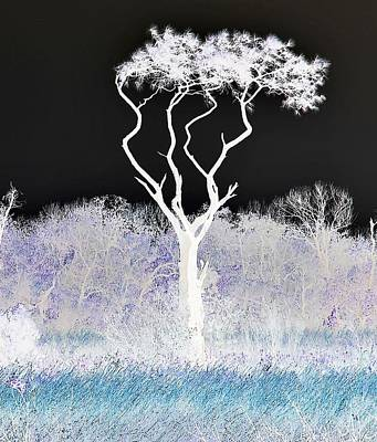 Digital Art - Different Enough To Be Noticed by John Hintz
