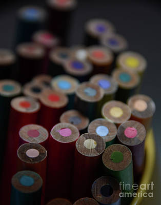 Photograph - Different Perspective With Color Pencils - Macro by Adrian DeLeon