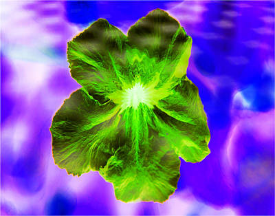 Digital Art - Digital Concussion - Flower by Christopher L Thomley