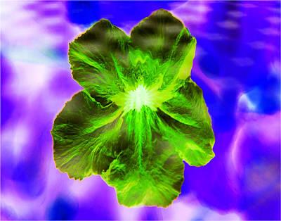 Digital Art - Digital Concussion - Flower by Christopher L Thomley