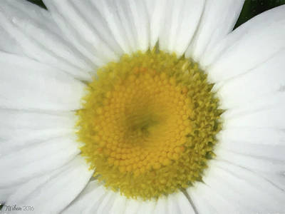 Photograph - Digital Daisy 2 by Teresa Wilson