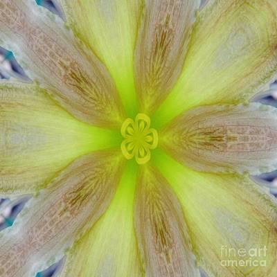Digital Art - Digital Daylily by D Hackett