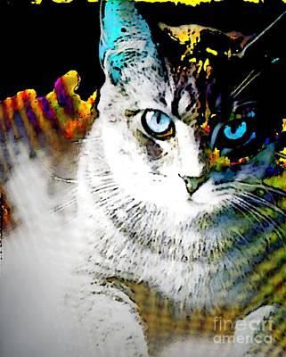 Animal Shelter Digital Art - Digital Flash by Jennifer Choate