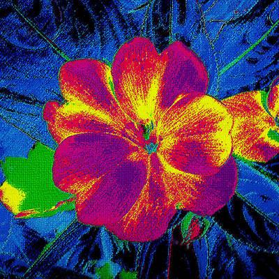 Painting - Digital Floral Painting by Merton Allen