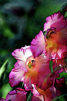 Photograph - Digital Painting Glowing Hot Pink And Yellow Gladiolus 3048 Dp_2 by Steven Ward
