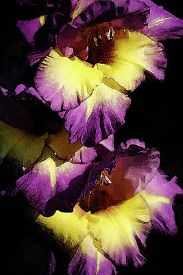 Photograph - Digital Painting Intense Purple And Yellow Gladiolus 3036 Dp_2 by Steven Ward