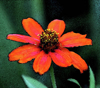 Photograph - Digital Painting Orange Blossom 3055 Dp_2 by Steven Ward