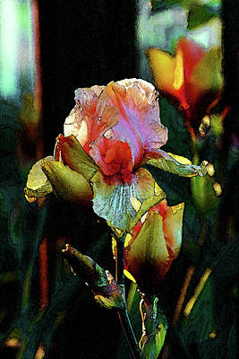 Photograph - Digital Painting Vibrant Iris 6764 Dp_2 by Steven Ward