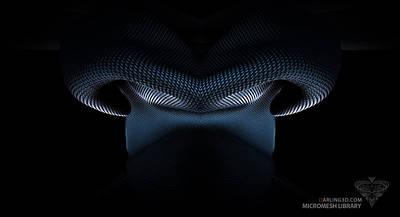 Digital Art - Digital Scent by Ryan Darling