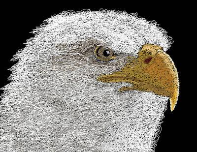 Yellow Beak Digital Art - Digital Scribble - Bald Eagle by Nathan Shegrud