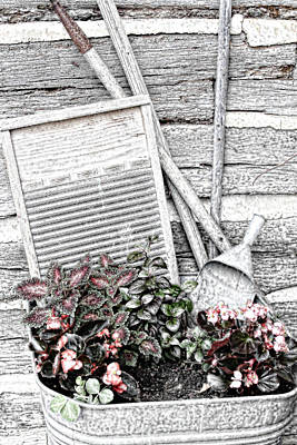 Digital Sketch Wash Tub And Flowers Art Print by Linda Phelps