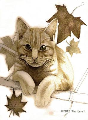Digital Art - Digitally Enhanced Cat Image by Tim Ernst