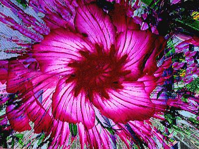 Photograph - Digitally Modified Abstract Desert Rose by Merton Allen