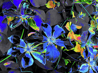 Digital Art - Digitally Painted Climatis Vine by Merton Allen