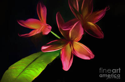 Photograph - Digitized Sunset Plumerias #2 by John A Rodriguez