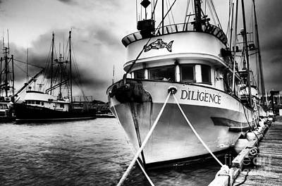 Photograph - Diligence Bw by Bob Christopher