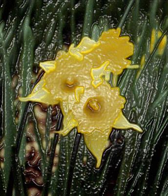 Dimensional Daffodils Art Print by Wide Awake Arts