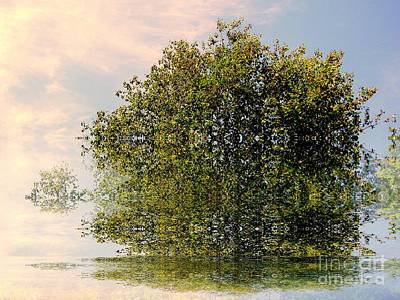 Photograph - Dimensional by Elfriede Fulda