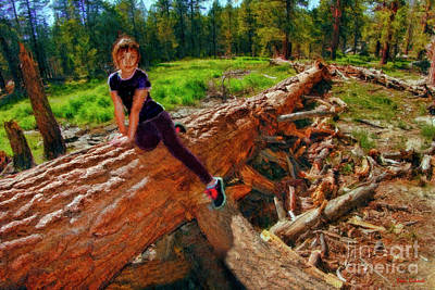 Photograph - Dina's Favorite Log by Blake Richards