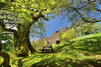 Photograph - Dinefwr Castle by Phil Fitzsimmons