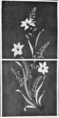 Photograph - Diner Flowers B W by Rob Hans