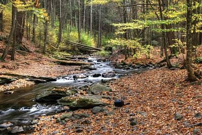 Photograph - Dingman's Creek 3  - Milford P A by Allen Beatty