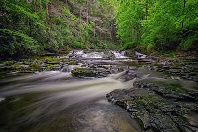 Northeastern Photograph - Dingmans Creek IIi by Rick Berk