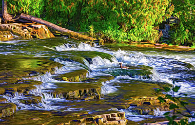 Photograph - Dinner Time At Sauble Falls - Paint by Steve Harrington