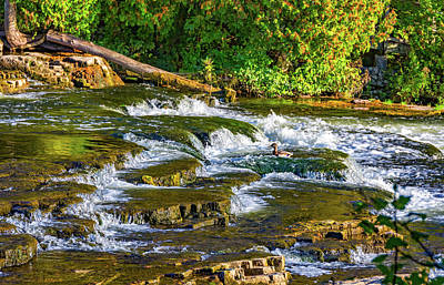 Abstract Works - Dinner Time At Sauble Falls by Steve Harrington