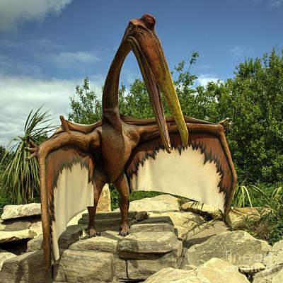 Flying Dinosaur Photograph - Dino Bird  by Rob Hawkins