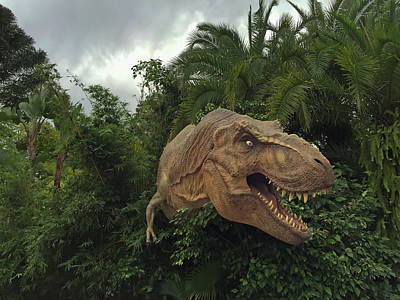 Photograph - Dinosaur by Aimee L Maher ALM GALLERY
