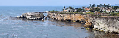 Seascape Photograph - Dinosaur Caves At Pismo Beach California by Barbara Snyder